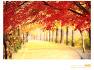 가을을 만나는 오솔길. 사진/벤지. 글/윤경희