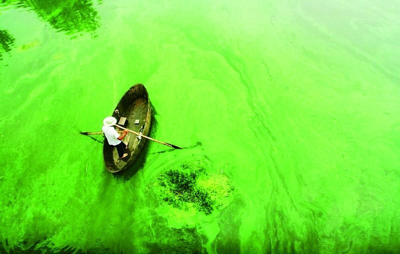 소호(巢湖)의 수질오염문제