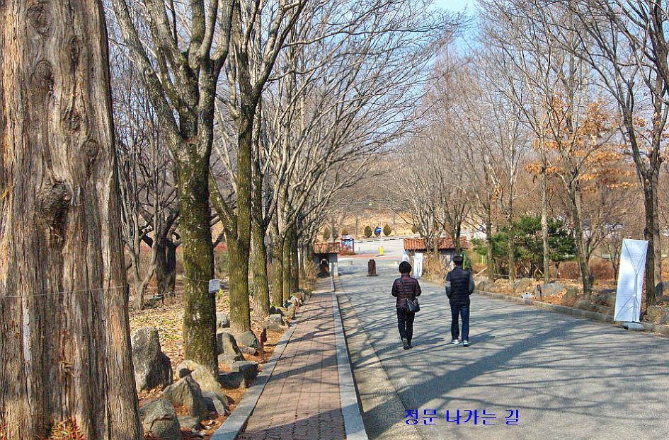 한국도로공사 수목원(전주) 풍경